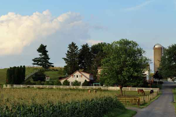 amish-farm-1