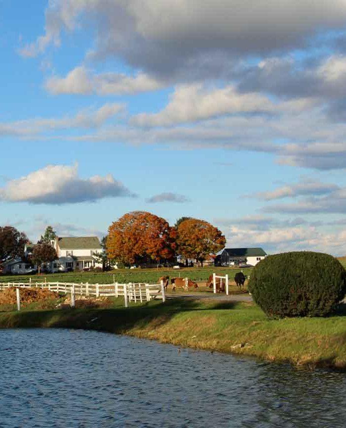 Amishtown Farm Guesthouse