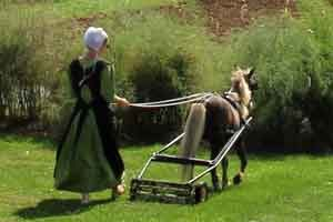 Amish lawn mower