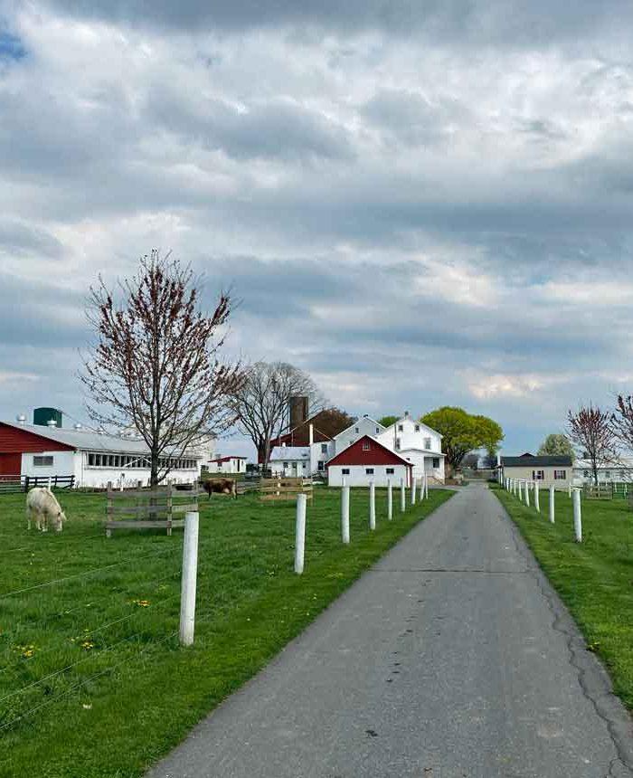 Green Meadows Farm Guesthouse